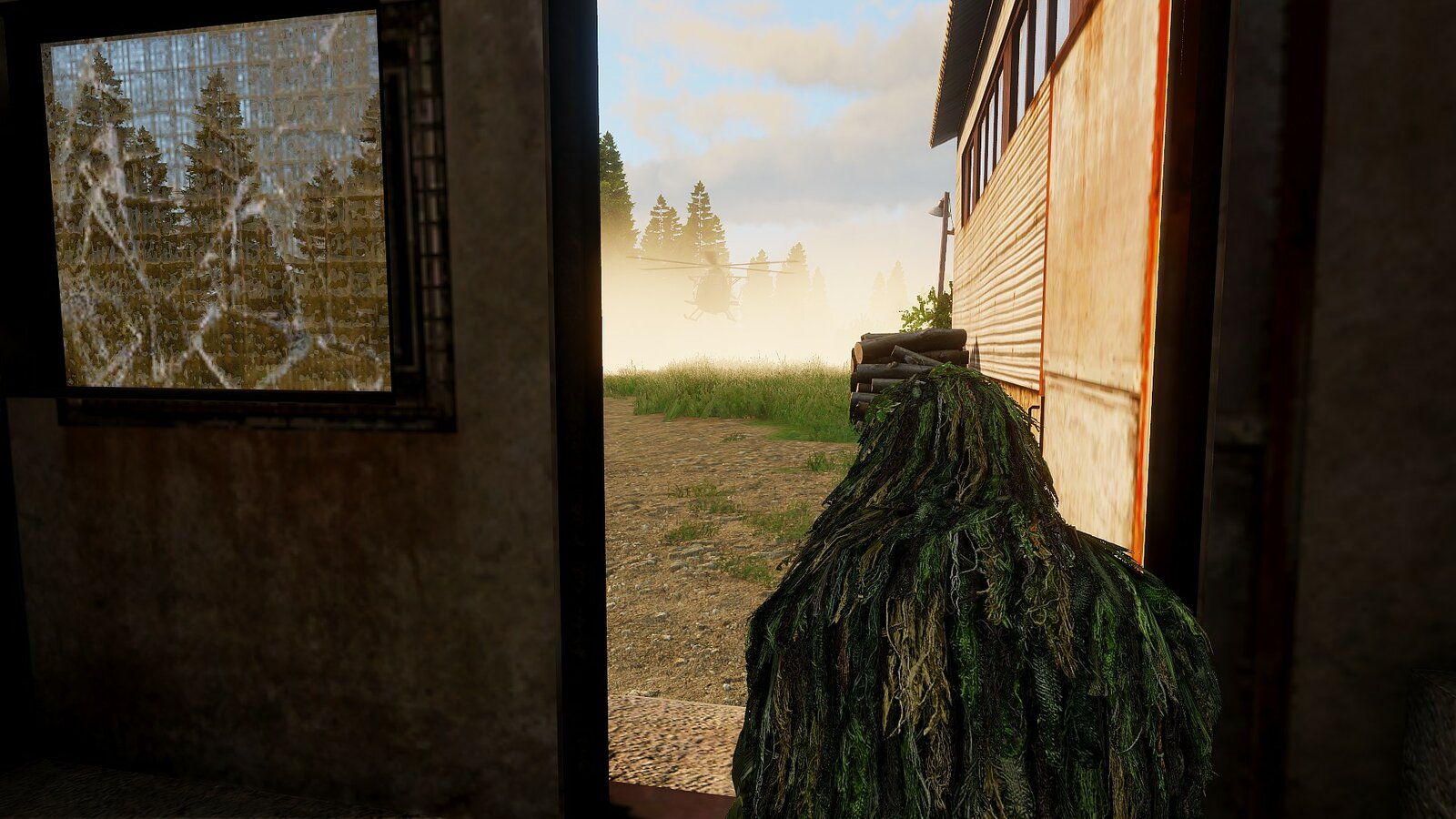 Wookiee in der Tür